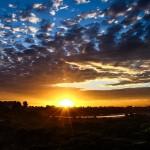 Newport's Sunset by Sean Olsen